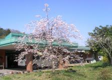 【介護スタッフ/栃木市】 障害者支援施設 ひばり野学園 (正社員)の画像2