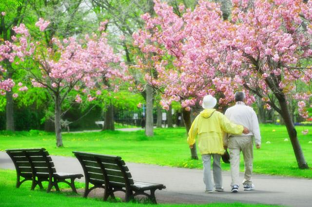 【ケアマネージャー/日光市】 居宅介護支援事業所 ケアプランセンター 愛泉 (正社員)の画像1