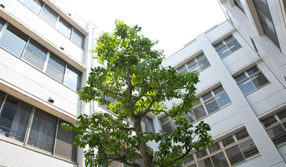 【事務職/大阪市平野区】 地域包括支援センター 加美北特別養護老人ホーム (パート)の画像1